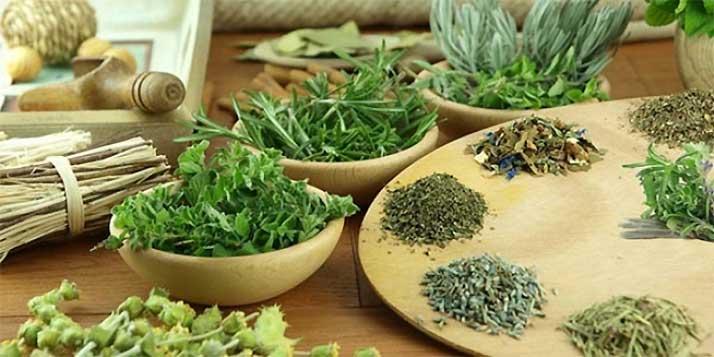 gyógynövények levele és morzsolva
